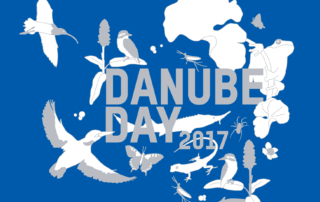 danube_day